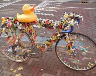 Amsterdam Duck Bike